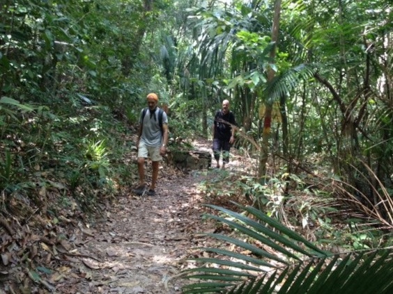 Pantai Kerachut Jungle Hike, Penang National Park,